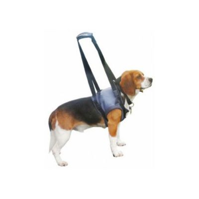 Αναπηρικά σκύλων & Καλύμματα αυτοκίνητων